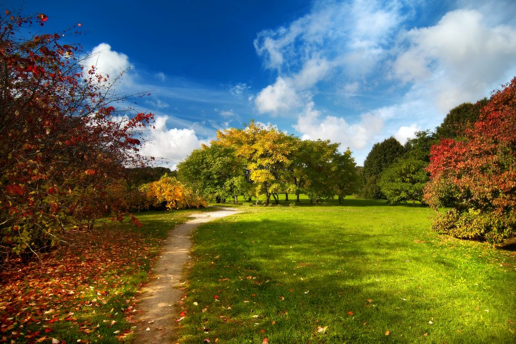 selling-your-house-in-autumn-with-a-guardian-realty-agent