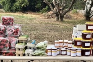 dural-growers-market
