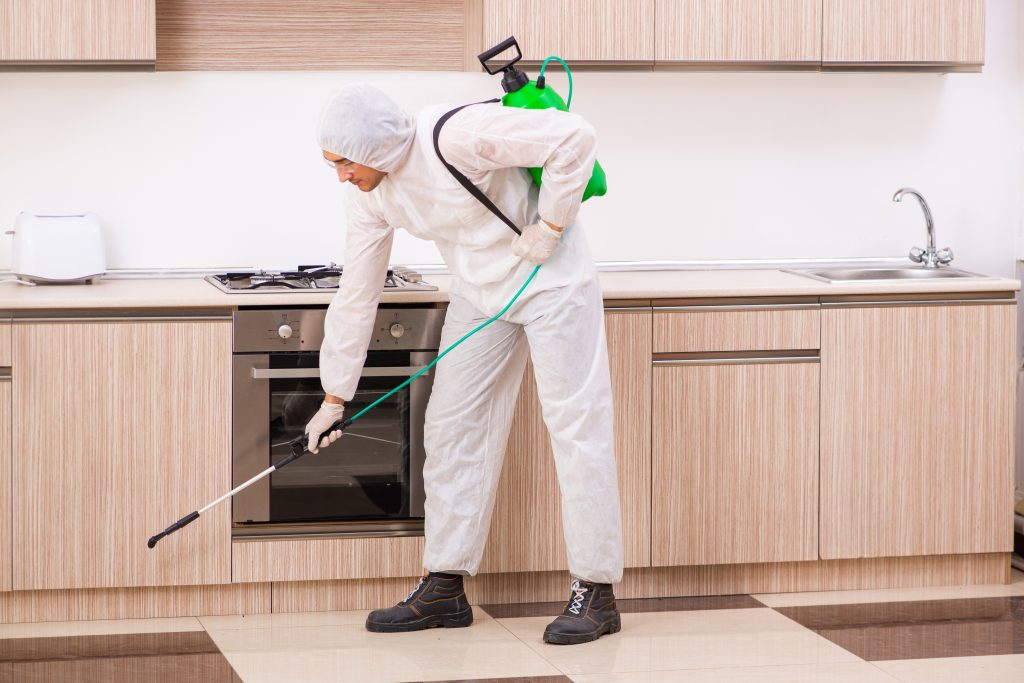 pest-control-rental-property
